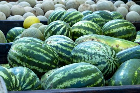 truckload: Truckload of whole watermelons and cantaloupe melons for sale at farmers market Stock Photo