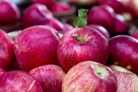 Close up of fresh picked red apples for sale at local farmers market