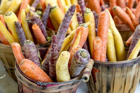 bushel: Rainbow carrots standing in brown bushel basket at local farmers market Stock Photo