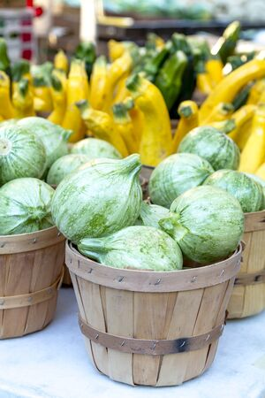 Farmers market display of calabacita squash, fresh yellow and green zucchini, squash