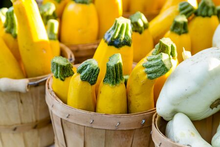 bushel: Close up of yellow zucchini in brown bushel baskets sitting on table at farmers market