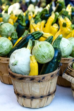 Farmers market table filled with brown bushel baskets with farm fresh yellow and green zucchini, calabacita and patty pan squash Stock Photo