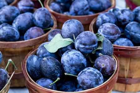 bushel: Brown bushel baskets filled with purple plums at local farmers market