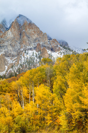 Mountainside shrouded in low clouds surrounded by yellow Aspen trees in full fall color and freshly fallen snow Stock Photo