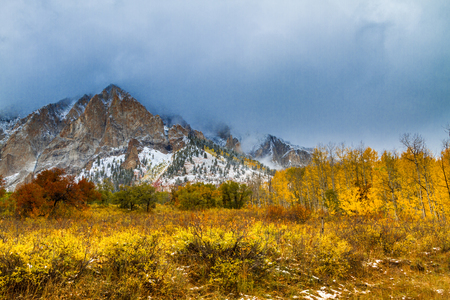 Mountainside shrouded in low clouds surrounded by yellow Aspen trees in full fall color and freshly fallen snow along Kebler Pass near Crested Butte Colorado