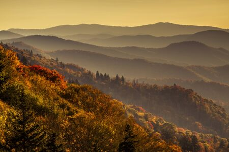 great smokies: Colorful fall foliage on mountainsides with hazy layers early morning in Great Smoky Mountains National Park