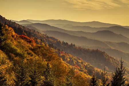 great smokies: Mountain layers filled with colorful fall foliage just after sunrise in Great Smoky Mountains National Park