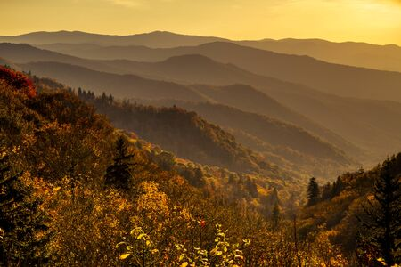 Colorful fall foliage on mountainsides with hazy layers early morning in Great Smoky Mountains National Park