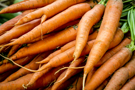 Stack of fresh organic orange carrots for sale at farmers market Stock Photo