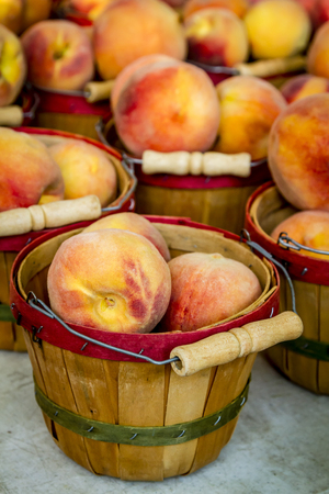 Yellow peaches in bushel baskets for sale at local farmers market