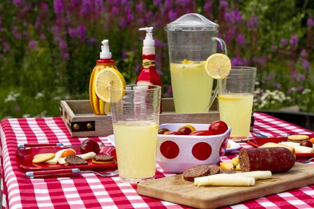 Summer picnic lunch in widlflowers with meat, cheese, crackers and vegetables with lemonade to drink in afternoon light
