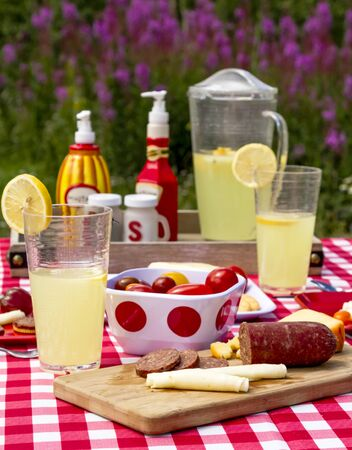 Close up of outdoors summer picnic lunch in widlflowers with meat, cheese, vegetables and lemonade to drink portrait orientation