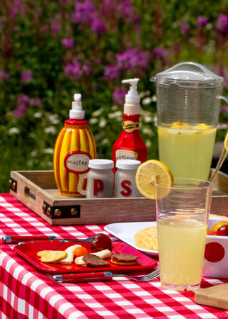 Picnic lunch in widlflowers with meat, cheese and crackers with lemonade to drink Stock Photo