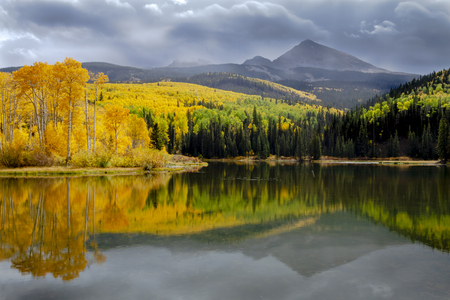 Yellow aspen trees lining mountain lake on stormy autumn afternoon during brief rain shower with brillant reflections in water
