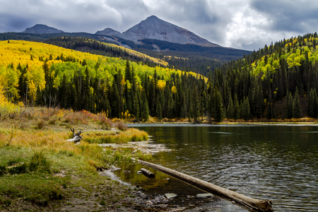 Shore of Woods Lake near Telluride Colorado with changing yellow aspen trees with Wilson Peak in distance 免版税图像 - 120267362