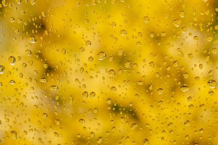 Zusammenfassung von Regentropfen am Fenster mit unscharfen Espenbaumblättern im Hintergrund