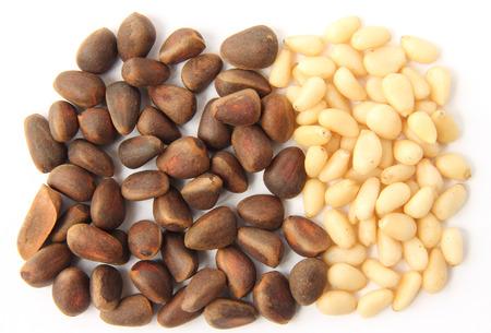 pinoli: Pinoli Pinoli a guscio su uno sfondo bianco