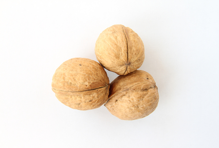 durability: Walnut in shell on a white background