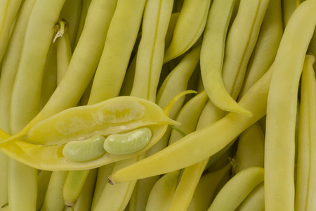 lysine: Abstract view from the top of the green beans