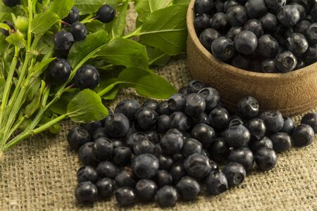 sprigs: Sprigs of blueberries in the curly shape on the background of natural fabrics