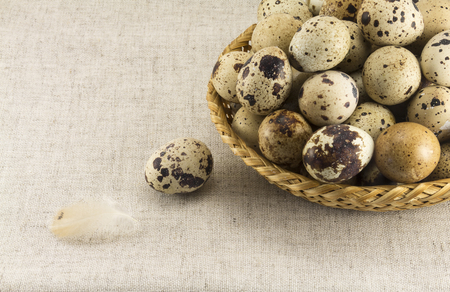 oval shape: Abstract view of quail eggs in a wicker oval shape on a background of natural fabrics