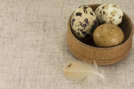 lecithin: Abstract view of quail eggs in a wooden circular shape on a background of natural fabrics