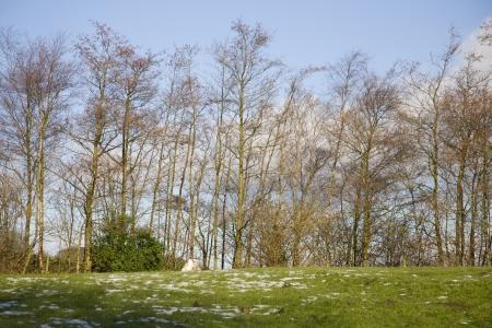 lancashire: lancashire in winter Stock Photo