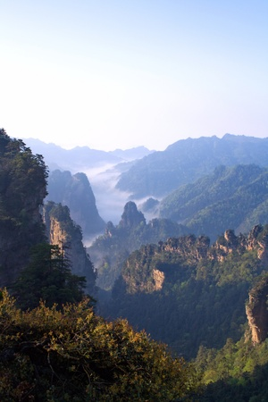 Morning in the mountains of Zhangjiajie  The province of Hunan  China is