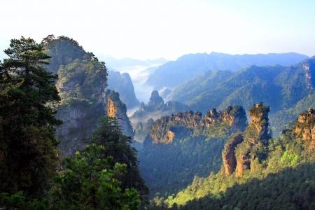 Mistige ochtend in de bergen van Zhangjiajie, provincie Hunan, China