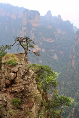 hunan: Zhangjiajie ancient mountains. The province of Hunan. China is.