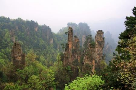 Zhangjiajie oude bergen. De provincie Hunan. China is.