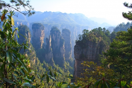 Mysterious Mountain Zhangjiajie. The province of Hunan. China