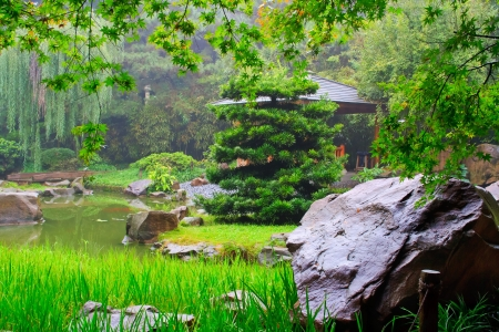 Foggy day in Chinese park. Chongqing city, China.