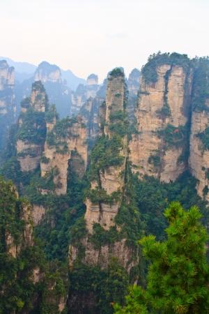 Mysterieuze Bergen Zhangjiajie. De provincie Hunan. China