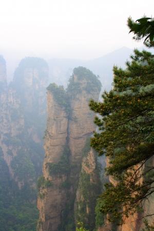 Mistige Bergen Zhangjiajie De provincie Hunan China Stockfoto