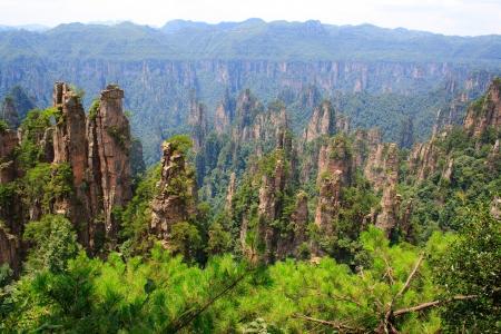 Zhangjiajie National Park, China  Avatar mountains  版權商用圖片