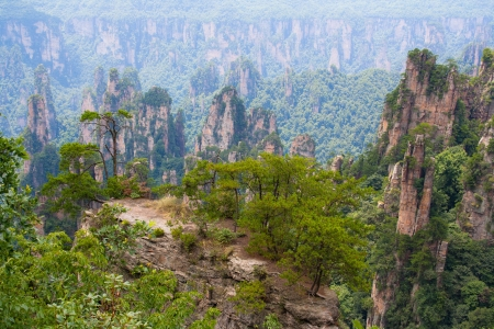 Zhangjiajie National Park, China  Avatar mountains  Stock Photo