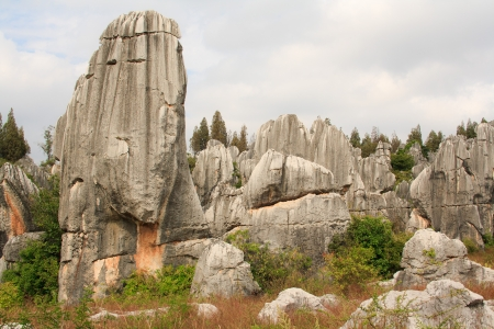 Shi Lin Stone forest national park in Yunnan province, China Stock Photo