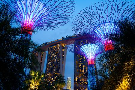 Magic Gardens Singapore  Editorial