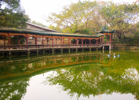 Landscape of chinese park. Chongqing. China. Stock Photo