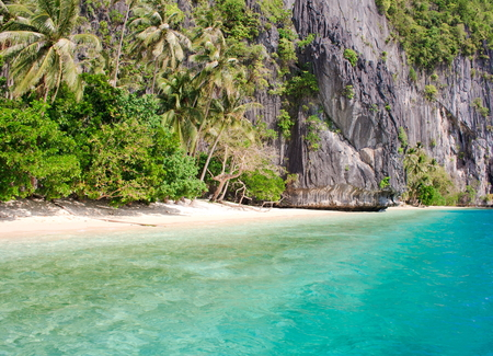 palawan: Landscape of tropical island. Palawan island. Philippines.