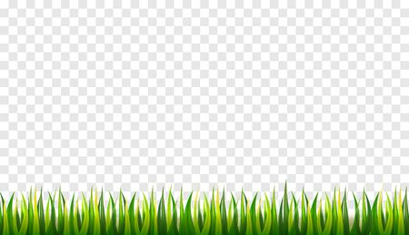Spring. Green grass. 3D fresh spring plants.