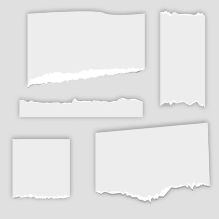 Set of torn note, notebook grainy paper strips stuck. Vector illustration EPS10