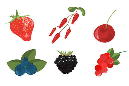 Set of berries painted in a watercolor style. Strawberries, cherries, raspberries, blackberries, blueberries,  grapes, cherry. Vettoriali