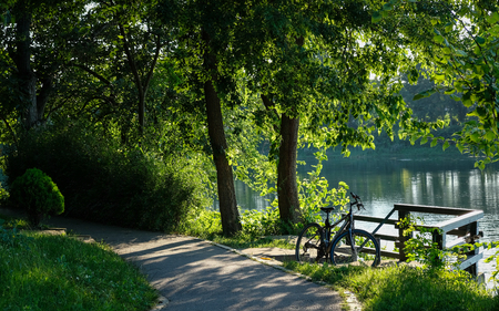Bicycle Parked on the Lake Shore Surrounded with Green Vegetation Stock Photo