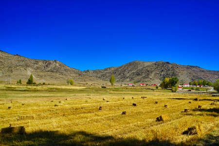 In front of the mountain, grass is rolled into squares and arranged. Red roof. Picturesque natural landscape. Keketuohai Scenic Area. Xinjiang, China. 2018