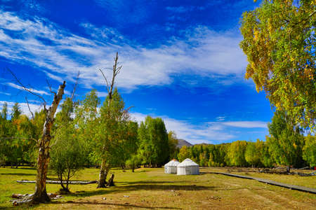 Yurt. A nomad's tent. Dwelling inhabited in action life. Pitching on the grass. Picturesque natural landscape. Keketuohai Scenic Area. Xinjiang, China. 2018