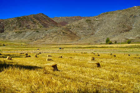 In front of the mountain, grass is rolled into squares and arranged. blue sky. Picturesque natural landscape. Keketuohai Scenic Area. Xinjiang, China. 2018