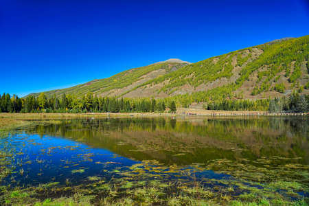 The tranquility of the lake and the mountains. The reflection of the blue sky. Kanas Lake, a natural lake and mountain paradise. Xinjiang Province, China. Sep. 2018