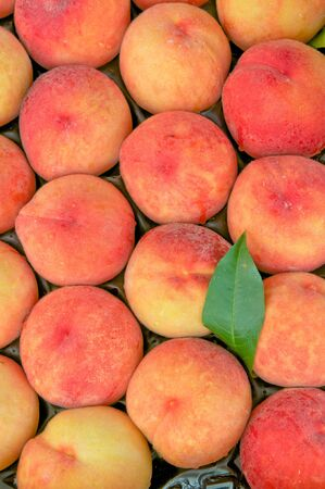 Ripe peaches in a box from above